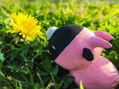お花見ブラド