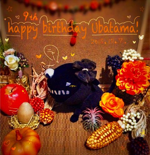 うばたま9歳誕生日!